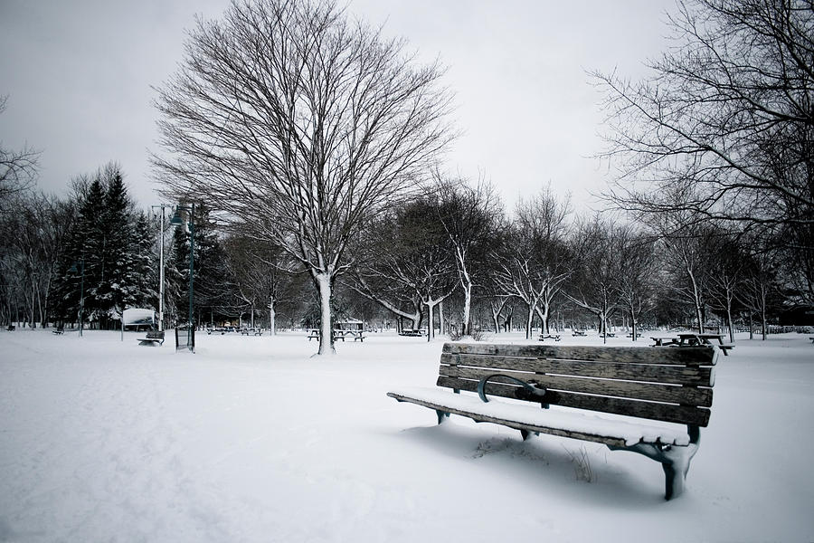 winter-bench-marcus-kihn